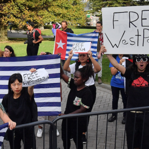 How the Milk Tea Alliance has teamed up with the 'West Papua Spring'