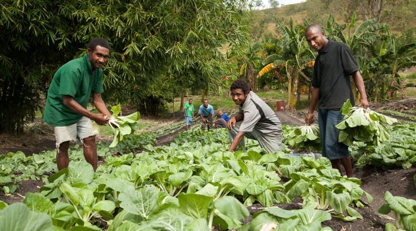 PNG: the hungry country